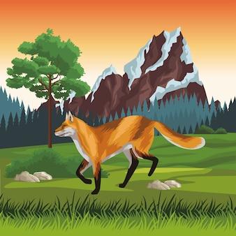 Dzikie zwierzę fox na scenie krajobrazowej