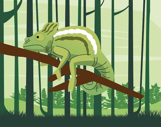 Dzikie zwierzę kameleon na scenie dżungli