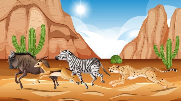 Dzikie zwierzę na sawannie
