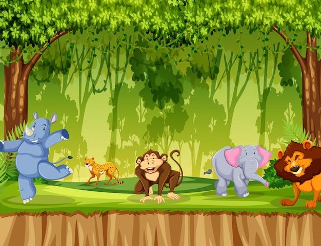 Dzikie zwierzę w lesie