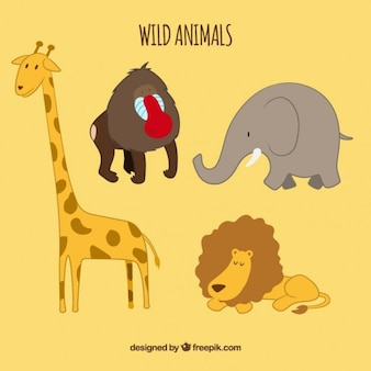 Dzikie zwierzęta cartoon collection