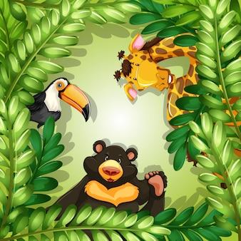 Dzikie zwierzęta na zielonej ramie urlopu