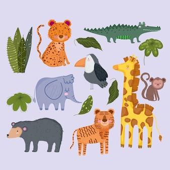 Dzikie zwierzęta safari słodki lampart słoń żyrafa małpa niedźwiedź małpa pozostawia liście