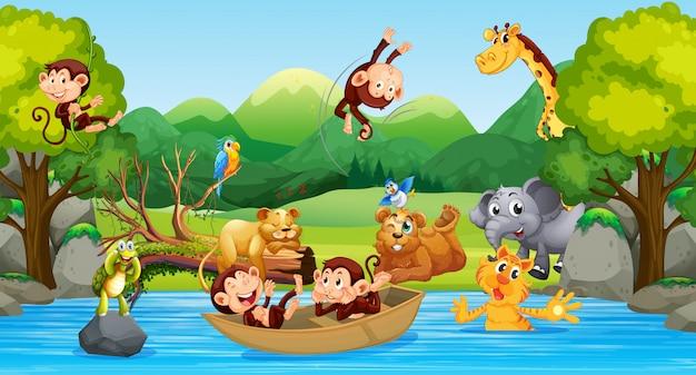 Dzikie zwierzęta w lesie