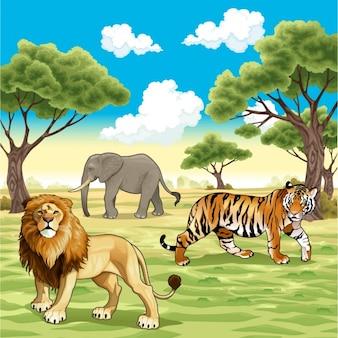 Dzikie zwierzęta w tle