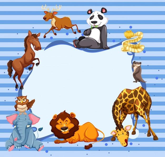 Dzikie zwierzęta wokół pasiastej granicy