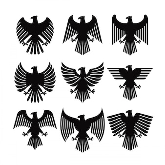 Eagle coat vector