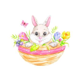Easter bunny w koszyku
