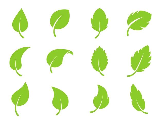 Eco liść zielony kolor logo wektor płaski zestaw ikon pojedyncze liście kształty na białym tle bio roślina ...