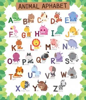 Edukacja alfabet zwierząt dla dzieci