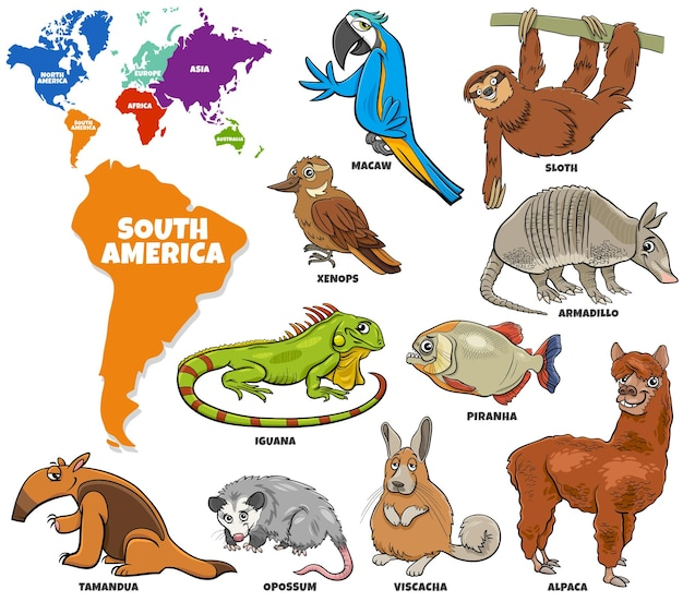 Edukacyjna ilustracja kreskówka zestaw gatunków zwierząt ameryki południowej