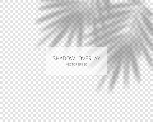 Efekt nakładki cienia. naturalne cienie na przezroczystym tle.