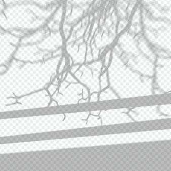 Efekt nakładki przezroczystych cieni drzew