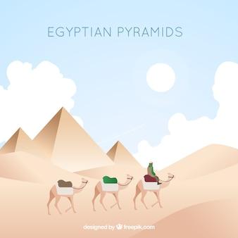 Egipski piramidy krajobraz z karawaną wielbłądów