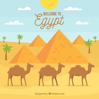 Egipt krajobraz z karawaną