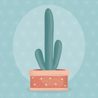 Egzotyczna kaktusowa roślina w ceramicznym garnku