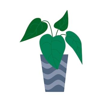 Egzotyczna tropikalna roślina doniczkowa w doniczce. ilustracja wektorowa płaski kolorowy.
