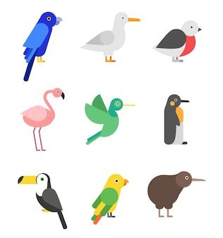 Egzotyczne ptaki w stylu płaskiej. stylizowane obrazki zestaw kolorowych ptaków zwierząt, dzikiej papugi tropikalnej i kalibru.