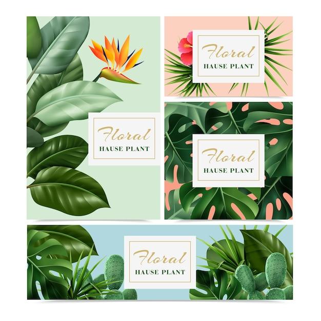 Egzotyczne tropikalne rośliny doniczkowe zestaw 4 realistycznych banerów reklamowych