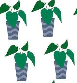 Egzotyczny wzór tropikalny roślina doniczkowa w doniczce. ilustracja wektorowa płaski kolorowy.
