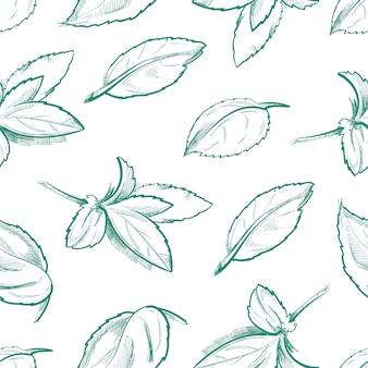 Ekologiczna herbata miętowa
