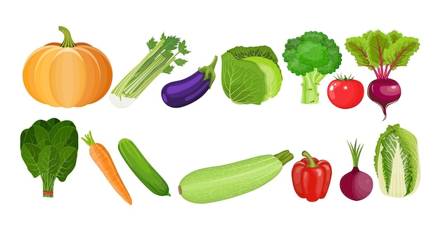 Ekologiczne jedzenie. świeża żywność ekologiczna, zdrowe odżywianie. warzywa