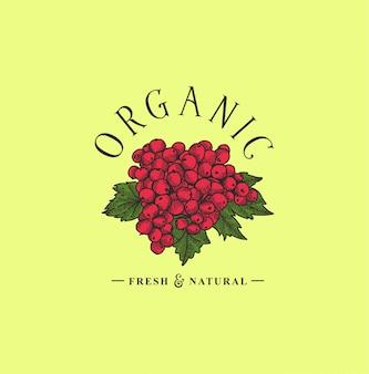 Ekologiczne ręcznie rysowane logo