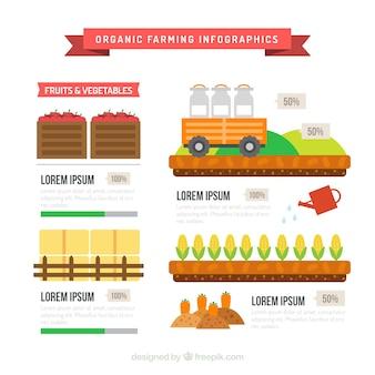 Ekologiczne rolnictwo infografia