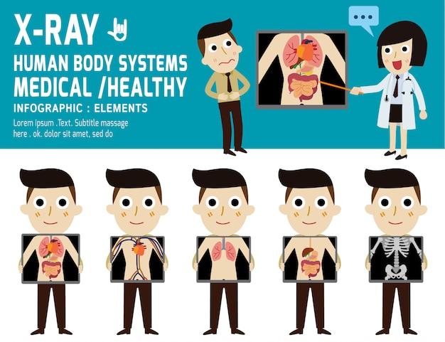 Ekran rentgenowski pokazujący narządy wewnętrzne i szkieletowy ilustracji wektorowych