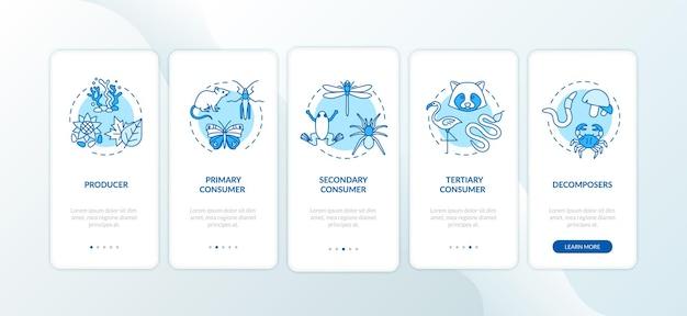 Ekran strony aplikacji mobilnej z wypasem łańcucha pokarmowego z koncepcjami. opis procesu biologicznego zużycia energii w 5 krokach, instrukcje graficzne. szablon wektorowy interfejsu użytkownika z kolorowymi ilustracjami rgb