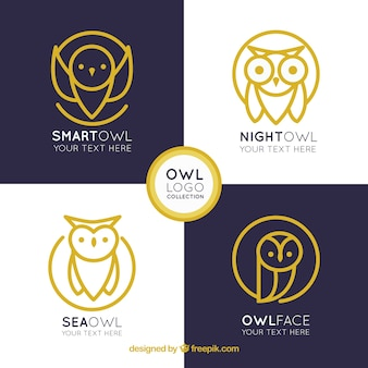 Elegancka kolekcja logo sowa