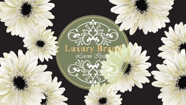 Elegancka luksusowa wizytówka z gerber stokrotką kwitnie wektorową ilustrację. streszczenie czarne tło