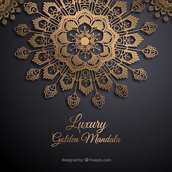Elegancki mandali koncepcja tło