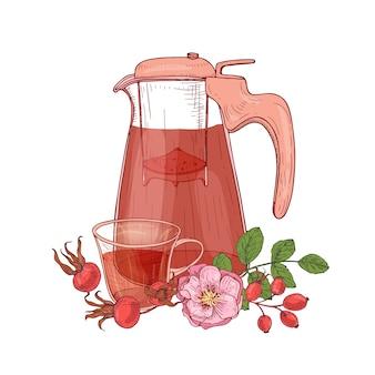 Elegancki rysunek szklanego przezroczystego dzbanka z sitkiem, filiżankę herbaty, gałąź psiej róży z kwiatami i liśćmi