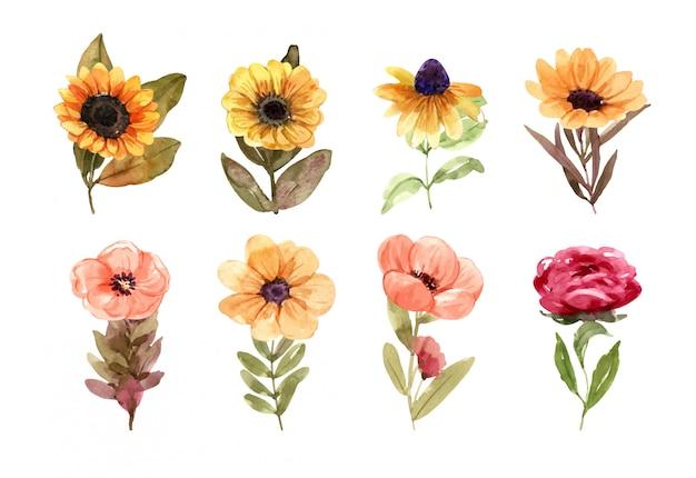 Element kwiatów w lecie