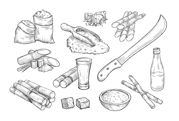 Elementy gospodarstwa trzciny cukrowej na białym tle ręcznie rysowane ilustracji kolekcji