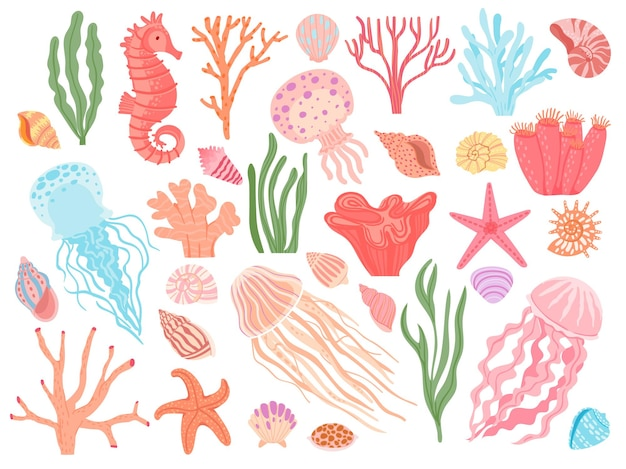 Elementy oceanu. wodorosty morskie kreskówka, koralowce, muszle i zwierzęta rafowe. rozgwiazdy morskie, konik morski i meduzy. morskie dekoracyjne wektor zestaw. podwodny ekosystem, wodne stworzenia naturalne