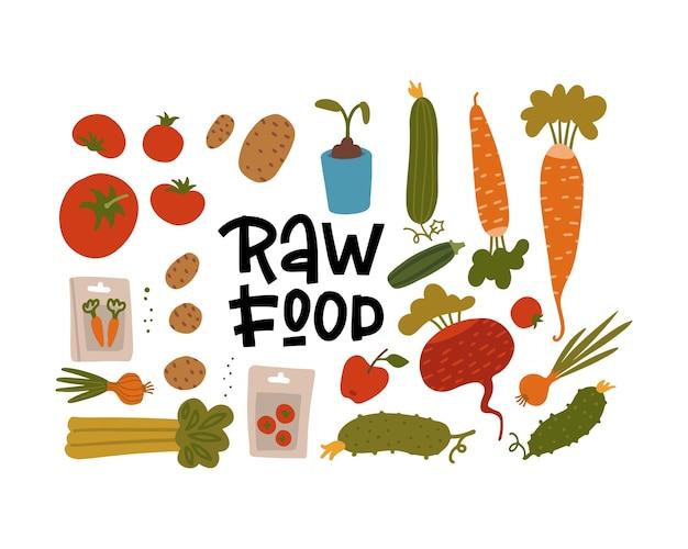Elementy rolnictwa ustawiają różne rośliny uprawne zdrową żywność ekologiczną z nasionami i kiełkami ręcznie rysowane ilustracji płaski styl flat