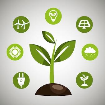 Energia odnawialna