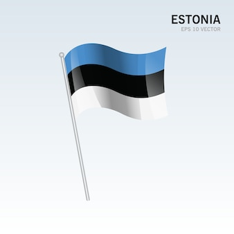 Estonia macha flaga odizolowywająca na popielatym tle