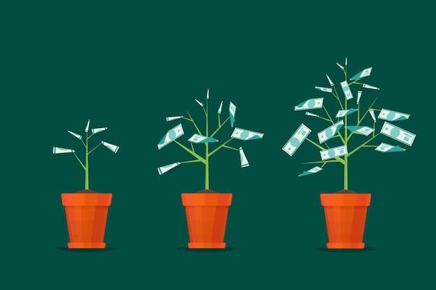 Etap wzrostu drzewa pieniądze samodzielnie na zielono