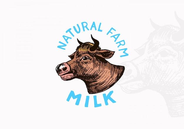 Etykieta mleka. vintage krowa logo dla sklepu.