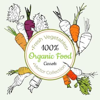 Etykieta na warzywa spożywcze z marchwi