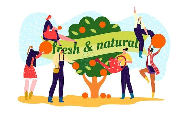 Etykieta rynku rolnego z żywnością ekologiczną, ilustracji wektorowych. mężczyzna kobieta ludzie charakter w pobliżu świeżego naturalnego znaku na drzewie, projekt lokalnych zbiorów.