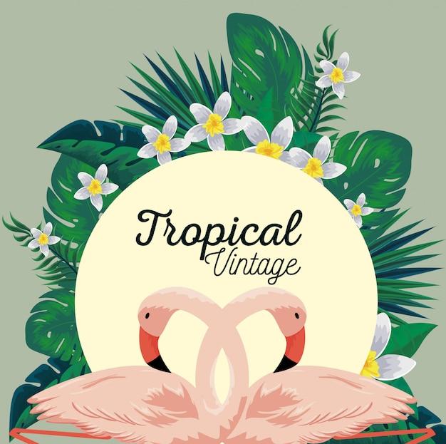 Etykieta tropikalnych flamingów i roślin kwiatowych