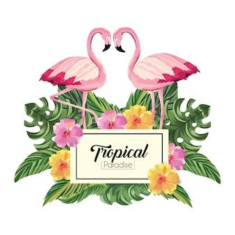 Etykieta ze zwierzętami flamingów i tropikalnymi liśćmi