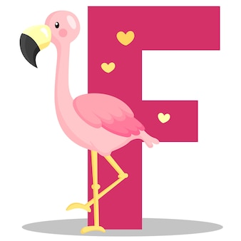 F for flamingo