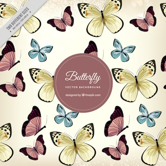 Fantastyczna tle pięknych motyli