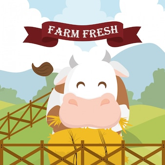 Farm świeży projekt.