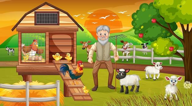 Farma o zachodzie słońca scena ze starym rolnikiem i zwierzętami hodowlanymi